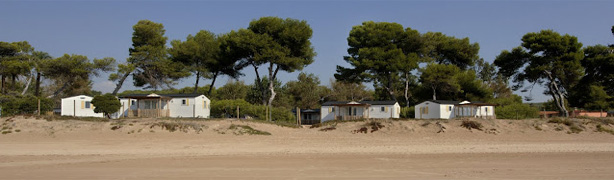 Bungalows en la playa